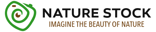natureStock logo
