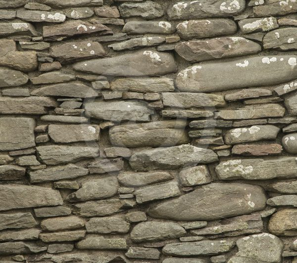 Ancient stone wall in Shetland - Nature Stock Photo Agency