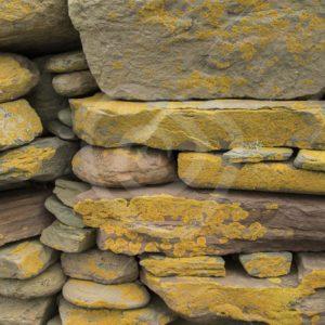 Ancient wall closup - Nature Stock Photo Agency