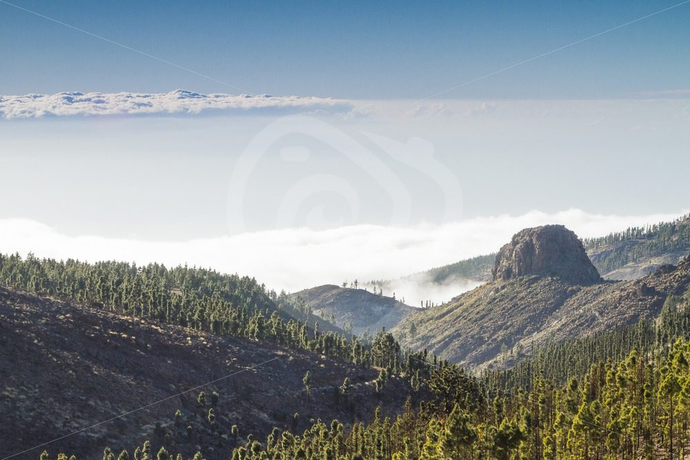 Above the clouds in Tenerife - Nature Stock Photo Agency