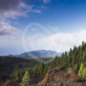 Volcano landscape Tenerife - Nature Stock Photo Agency
