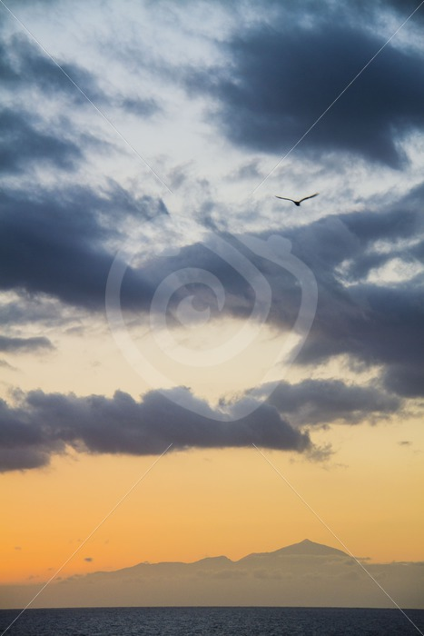 Sunset from Gran Canaria over Tenerife with the Teide - Nature Stock Photo Agency