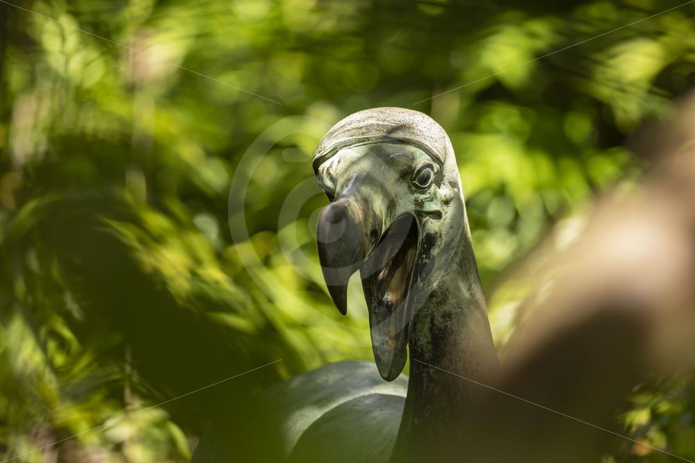 Dodo statue on Ile aux Aigrettes Nature Reserve - Nature Stock Photo Agency