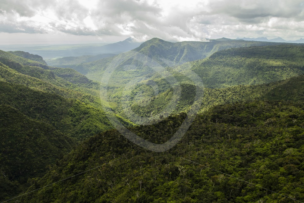 Black River Gorge National park in Mauritius - Nature Stock Photo Agency