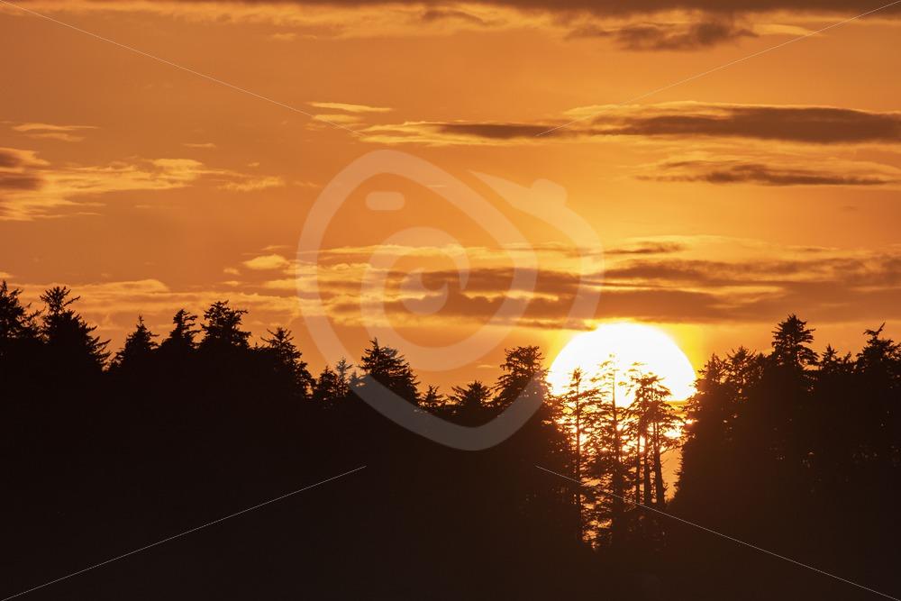 Sunset on Tofino beach - Nature Stock Photo Agency