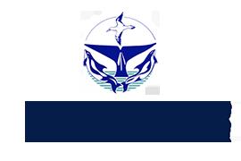 MICS Logo