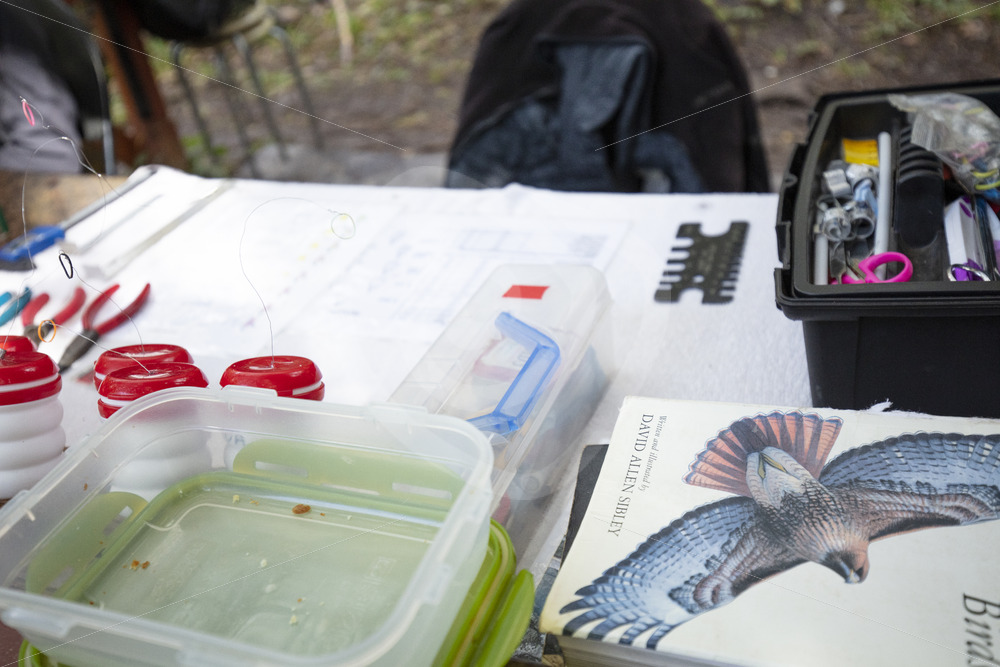 Outdoor working desk of a bird ringer - Nature Stock Photo Agency